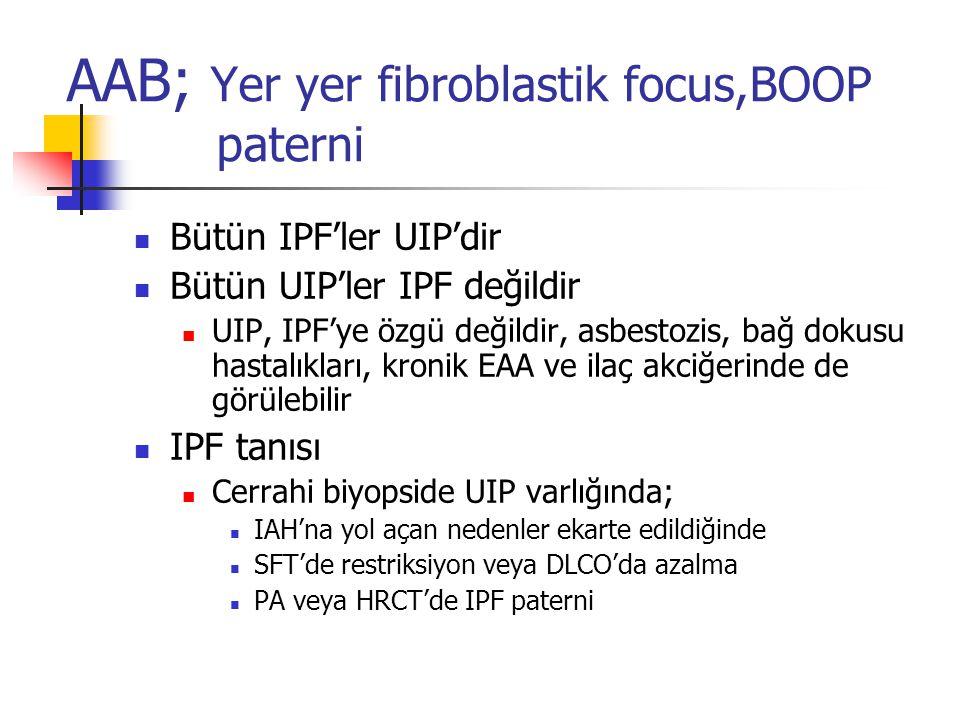 AAB; Yer yer fibroblastik focus,BOOP paterni