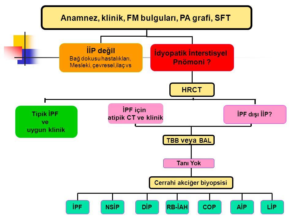 Anamnez, klinik, FM bulguları, PA grafi, SFT