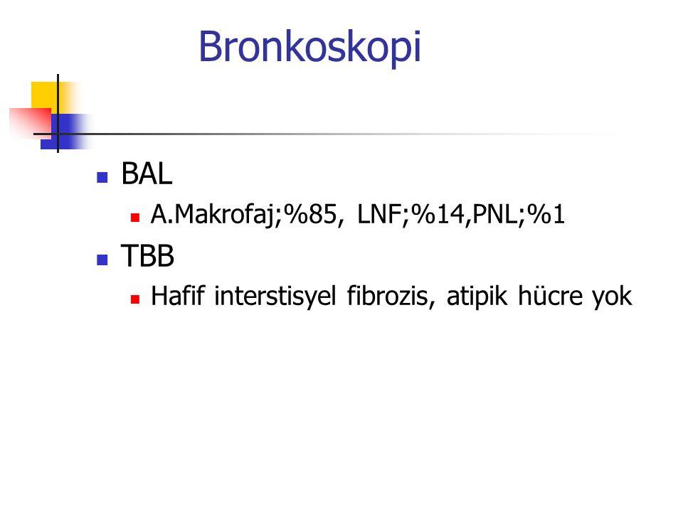 Bronkoskopi BAL TBB A.Makrofaj;%85, LNF;%14,PNL;%1