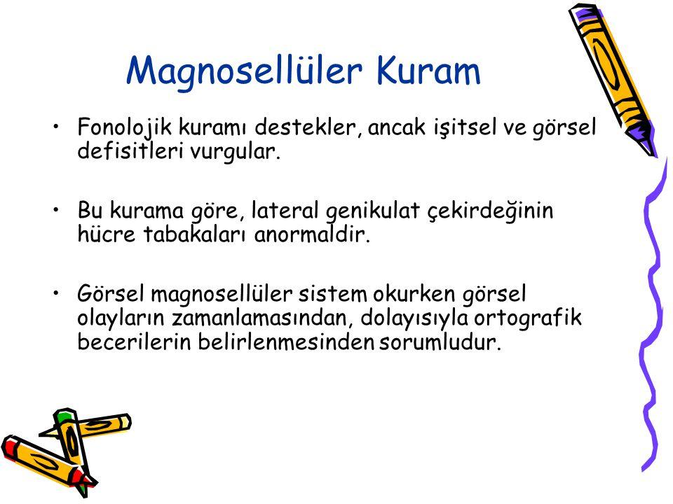 Magnosellüler Kuram Fonolojik kuramı destekler, ancak işitsel ve görsel defisitleri vurgular.