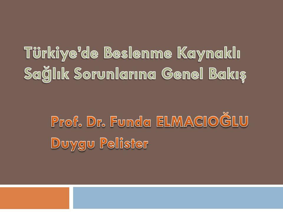 Türkiye'de Beslenme Kaynaklı Sağlık Sorunlarına Genel Bakış
