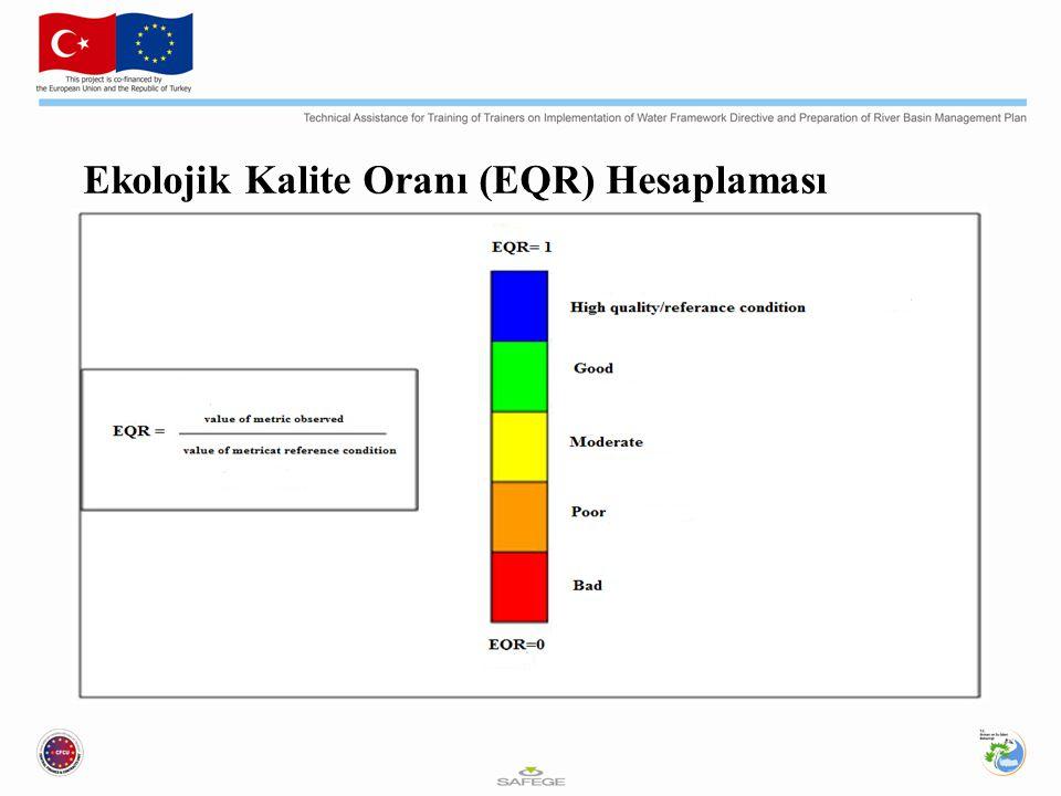 Ekolojik Kalite Oranı (EQR) Hesaplaması