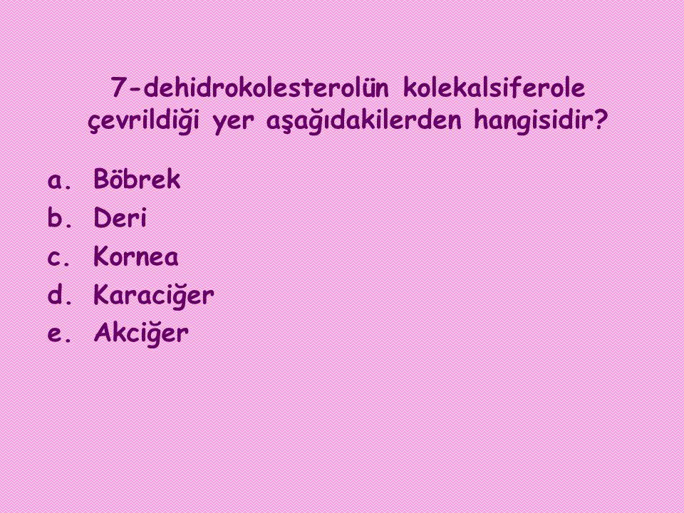 7-dehidrokolesterolün kolekalsiferole çevrildiği yer aşağıdakilerden hangisidir