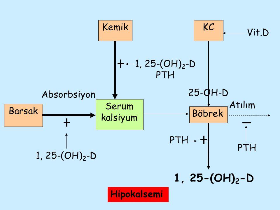 1, 25-(OH)2-D Kemik KC Vit.D 1, 25-(OH)2-D PTH 25-OH-D Absorbsiyon