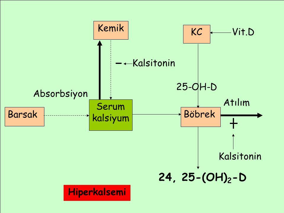 24, 25-(OH)2-D Kemik KC Vit.D Kalsitonin 25-OH-D Absorbsiyon Atılım