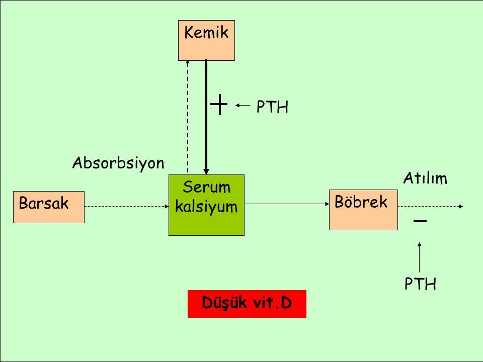 Kemik PTH Absorbsiyon Atılım Serum kalsiyum Barsak Böbrek PTH Düşük vit.D