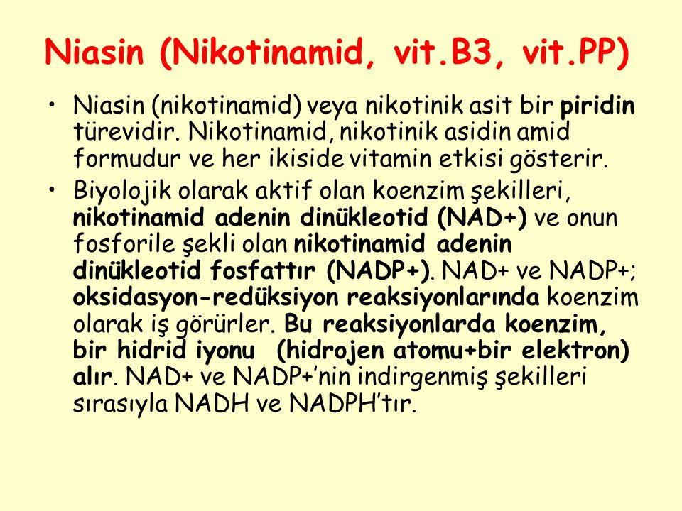 Niasin (Nikotinamid, vit.B3, vit.PP)
