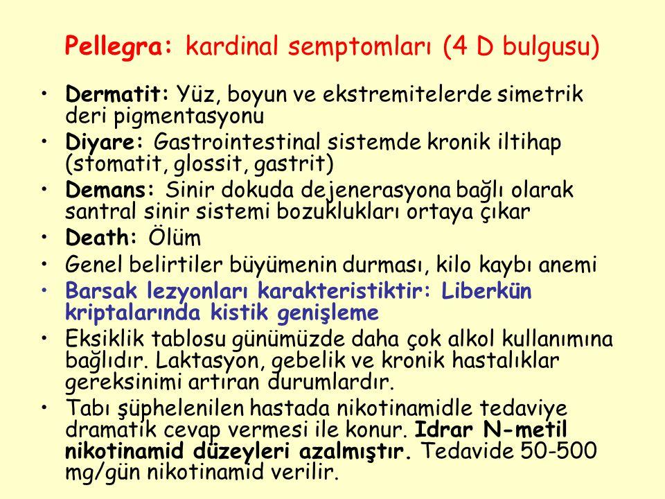 Pellegra: kardinal semptomları (4 D bulgusu)