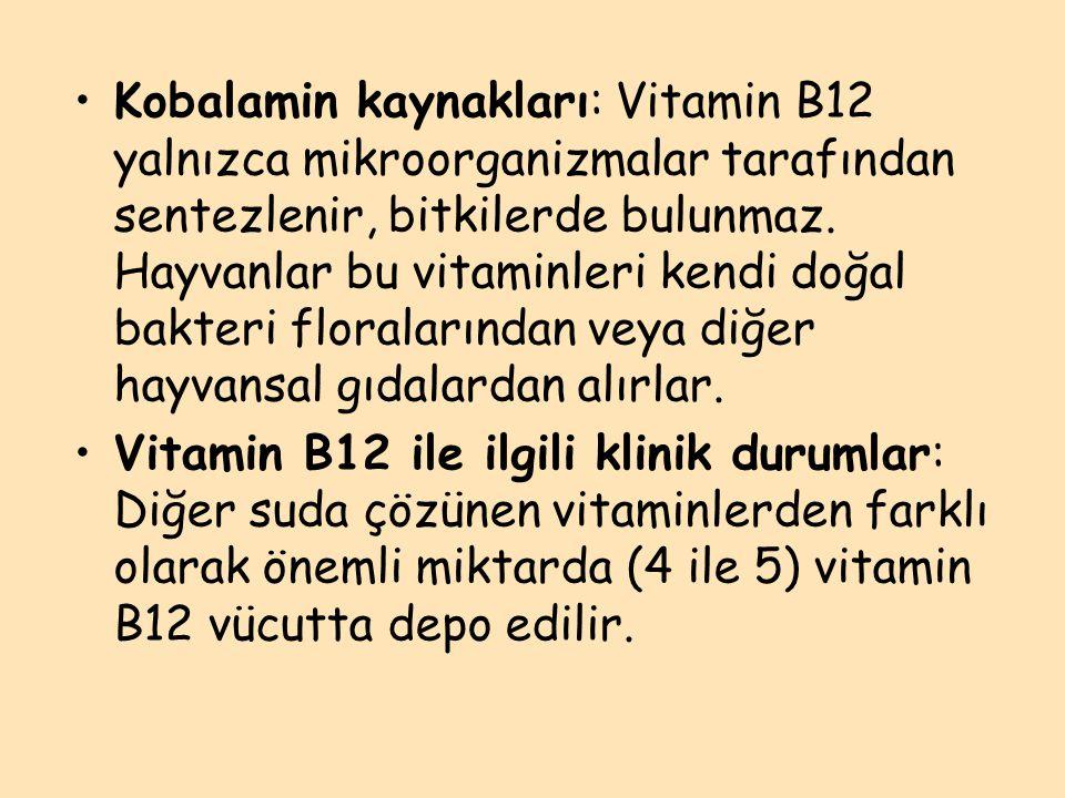 Kobalamin kaynakları: Vitamin B12 yalnızca mikroorganizmalar tarafından sentezlenir, bitkilerde bulunmaz. Hayvanlar bu vitaminleri kendi doğal bakteri floralarından veya diğer hayvansal gıdalardan alırlar.