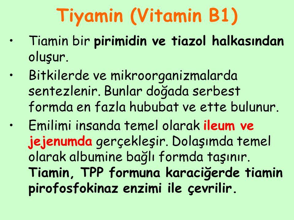 Tiyamin (Vitamin B1) Tiamin bir pirimidin ve tiazol halkasından oluşur.