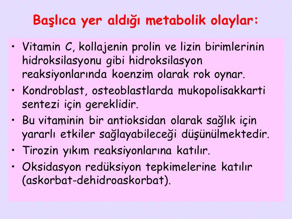 Başlıca yer aldığı metabolik olaylar: