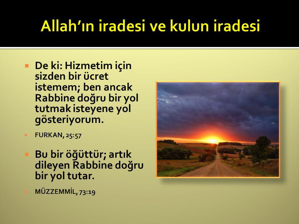Allah'ın iradesi ve kulun iradesi