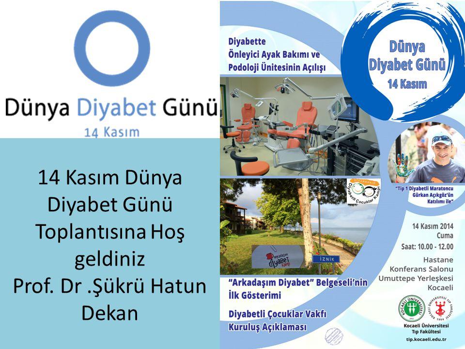 14 Kasım Dünya Diyabet Günü Toplantısına Hoş geldiniz Prof. Dr
