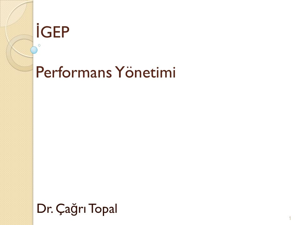 İGEP Performans Yönetimi