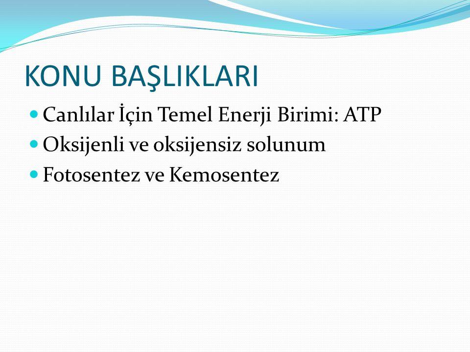 KONU BAŞLIKLARI Canlılar İçin Temel Enerji Birimi: ATP