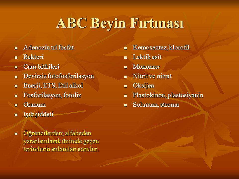 ABC Beyin Fırtınası Adenozin tri fosfat Bakteri Cam bitkileri