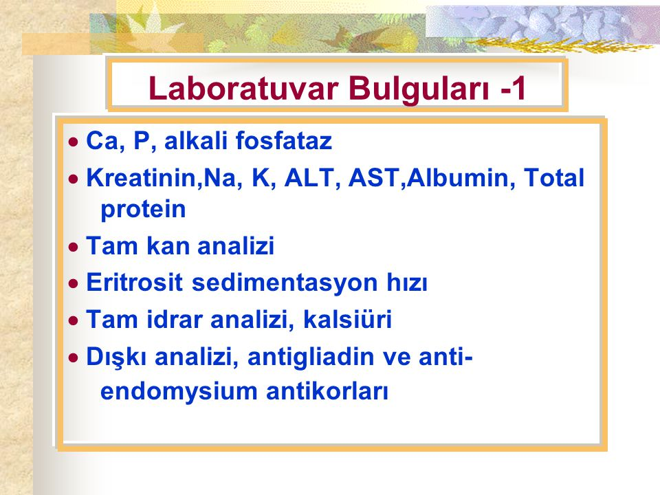 Laboratuvar Bulguları -1