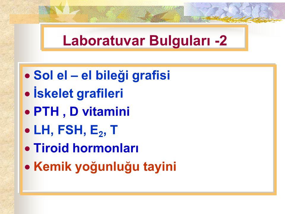 Laboratuvar Bulguları -2
