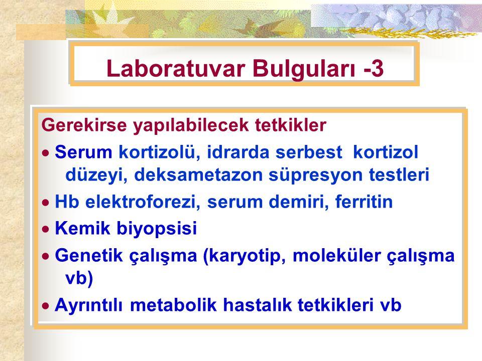 Laboratuvar Bulguları -3