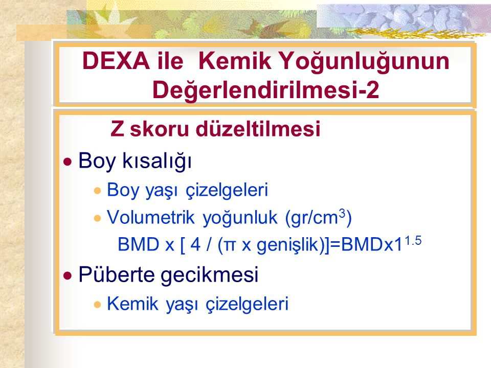 DEXA ile Kemik Yoğunluğunun Değerlendirilmesi-2