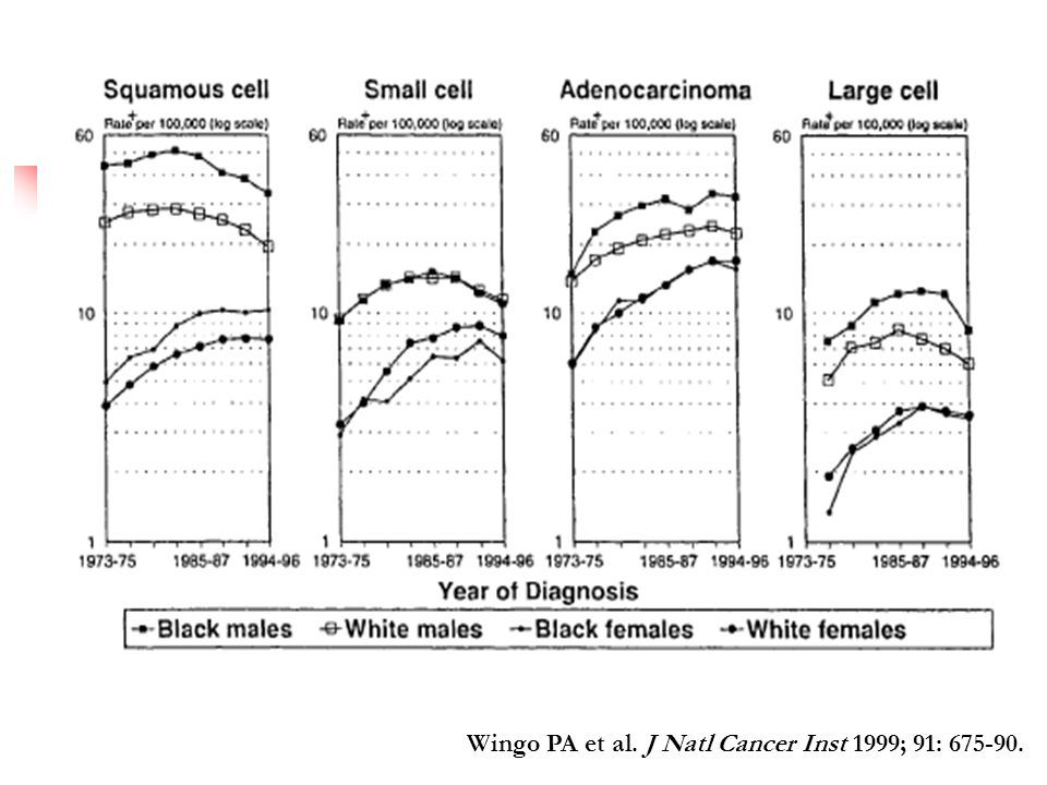 Wingo PA et al. J Natl Cancer Inst 1999; 91: 675-90.