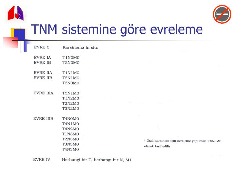 TNM sistemine göre evreleme