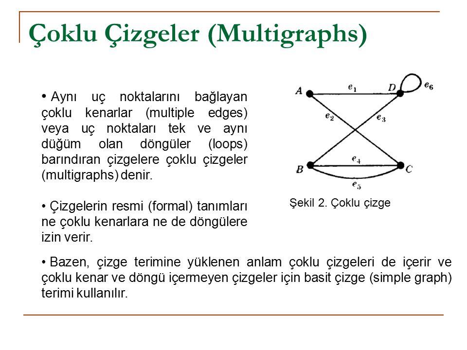 Çoklu Çizgeler (Multigraphs)