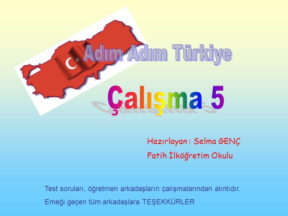 Çalışma 5 Adım Adım Türkiye Hazırlayan : Selma GENÇ