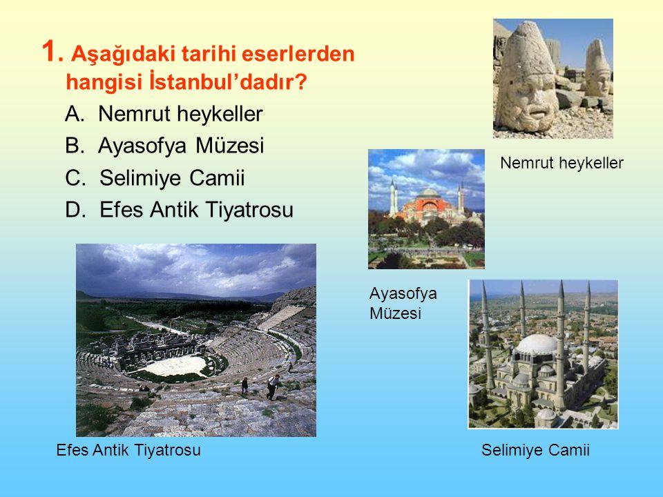 1. Aşağıdaki tarihi eserlerden hangisi İstanbul'dadır