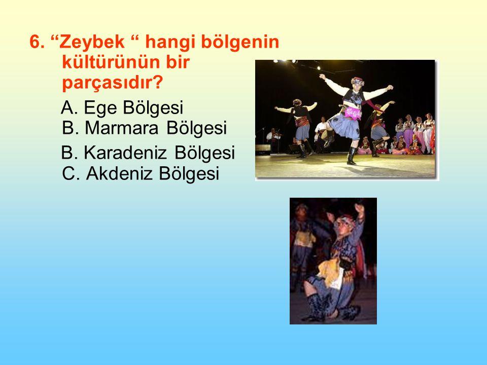 6. Zeybek hangi bölgenin kültürünün bir parçasıdır