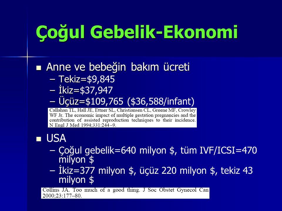 Çoğul Gebelik-Ekonomi
