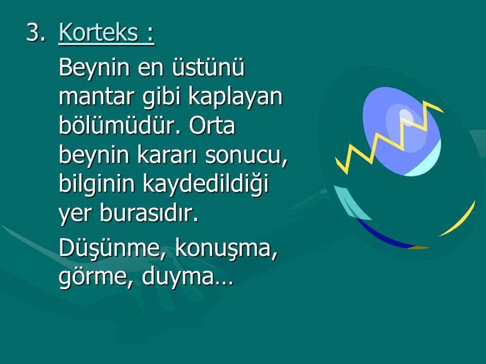 Korteks : Beynin en üstünü mantar gibi kaplayan bölümüdür. Orta beynin kararı sonucu, bilginin kaydedildiği yer burasıdır.