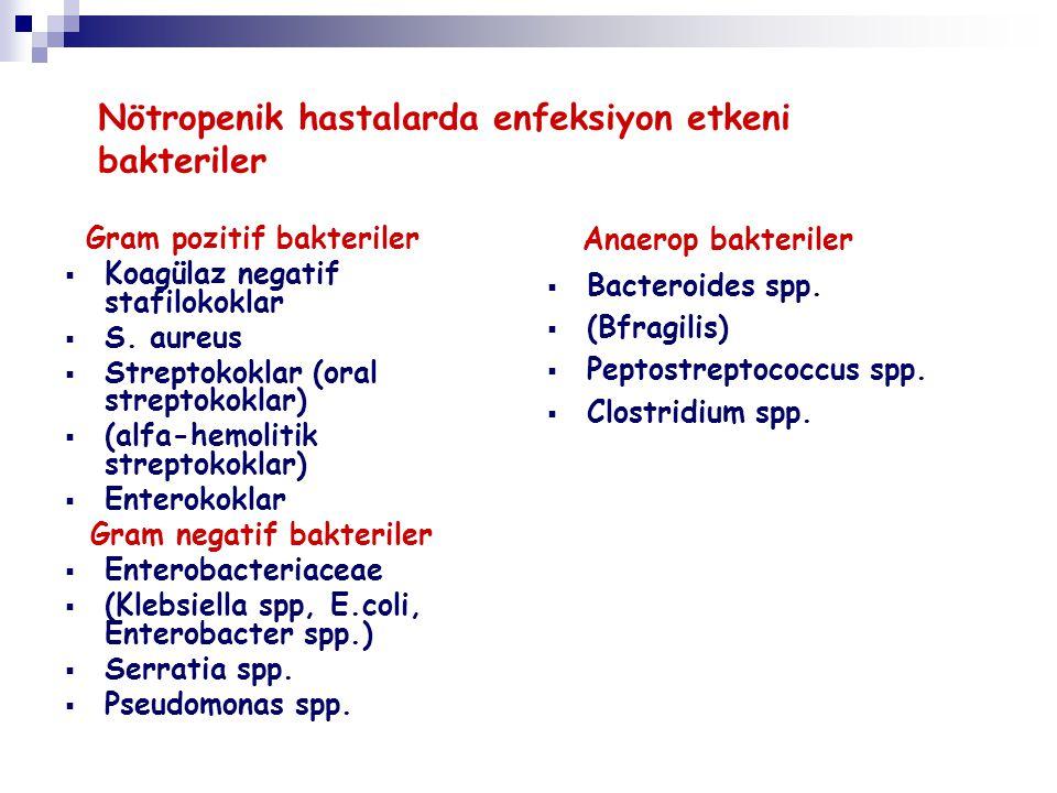 Nötropenik hastalarda enfeksiyon etkeni bakteriler