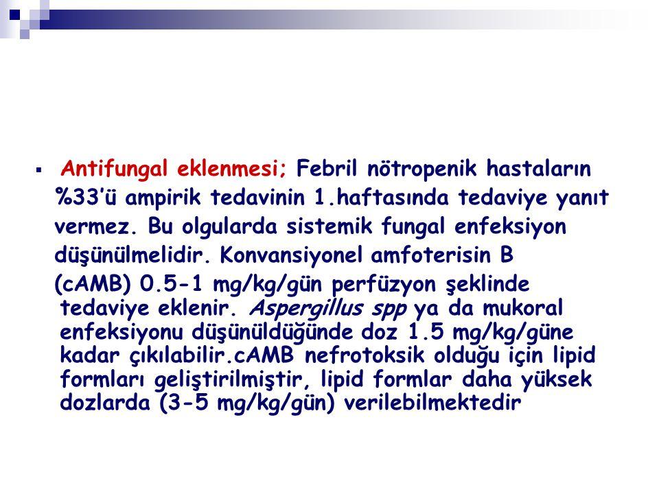Antifungal eklenmesi; Febril nötropenik hastaların