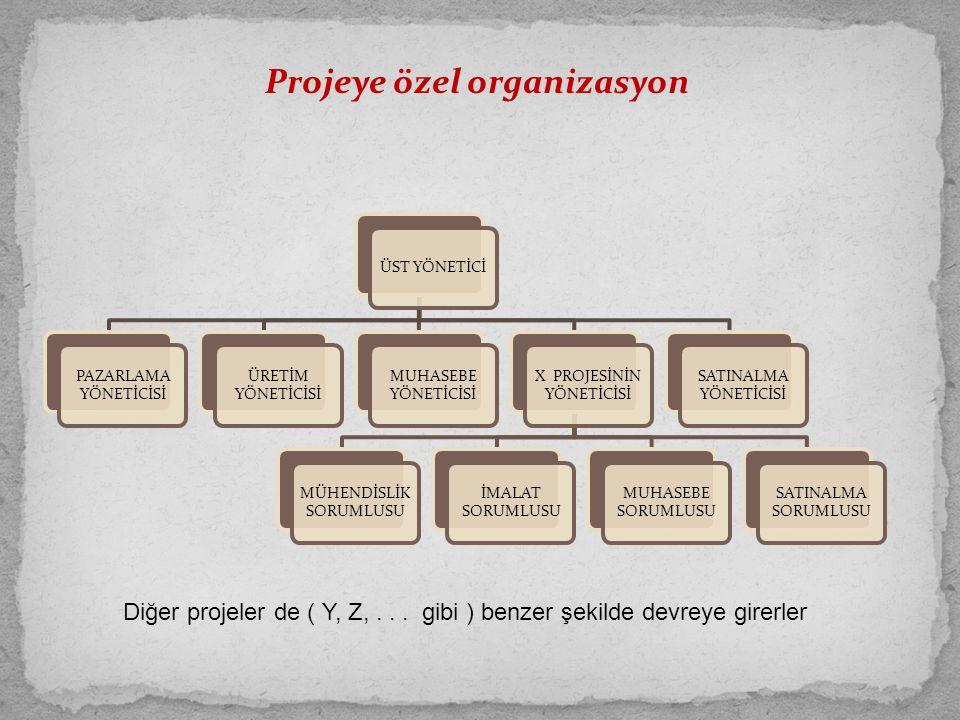 Projeye özel organizasyon