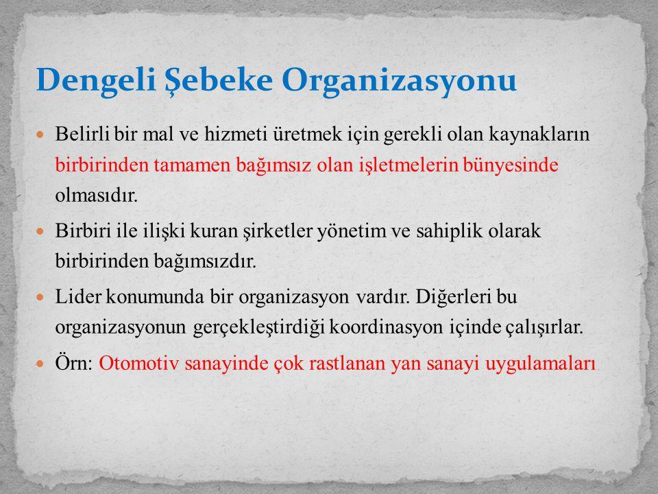 Dengeli Şebeke Organizasyonu