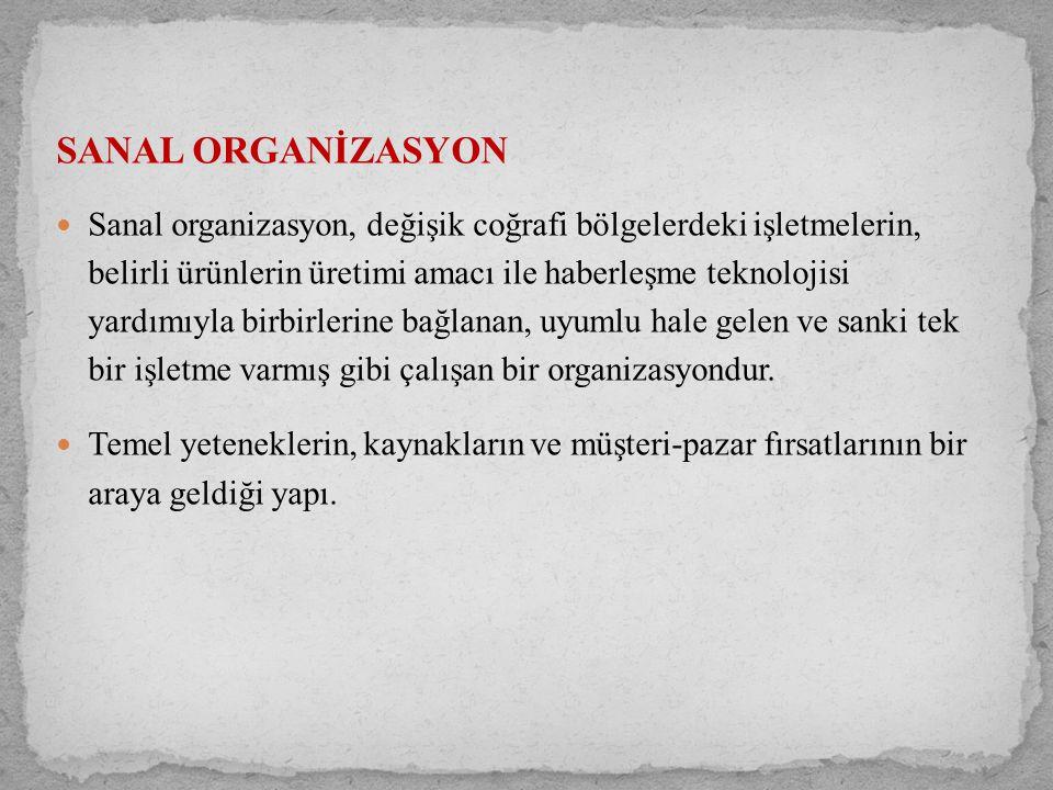 SANAL ORGANİZASYON