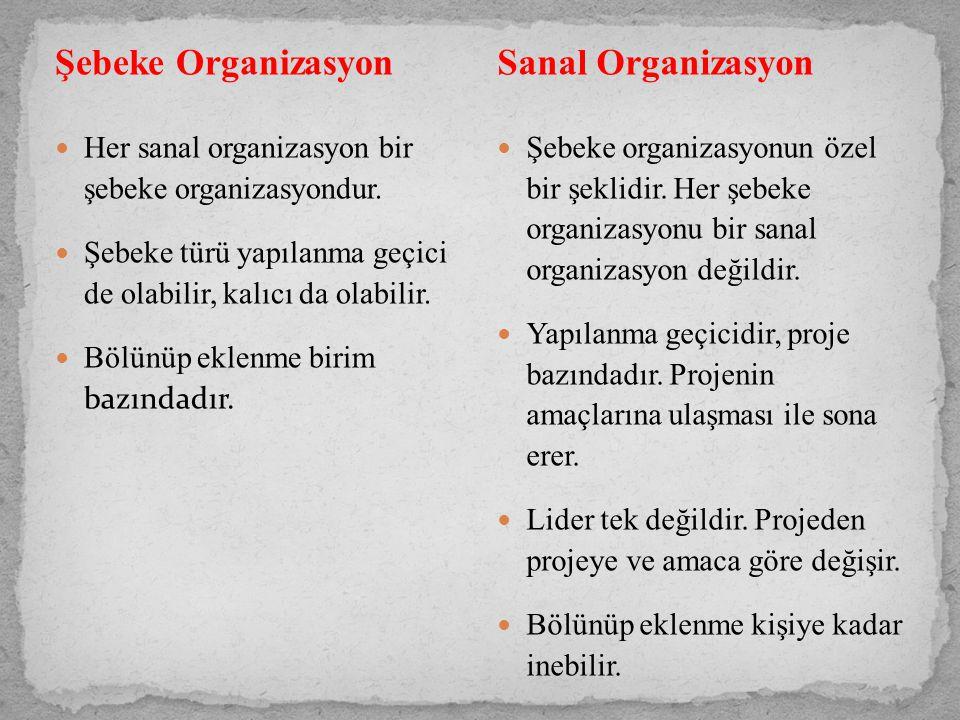 Şebeke Organizasyon Sanal Organizasyon