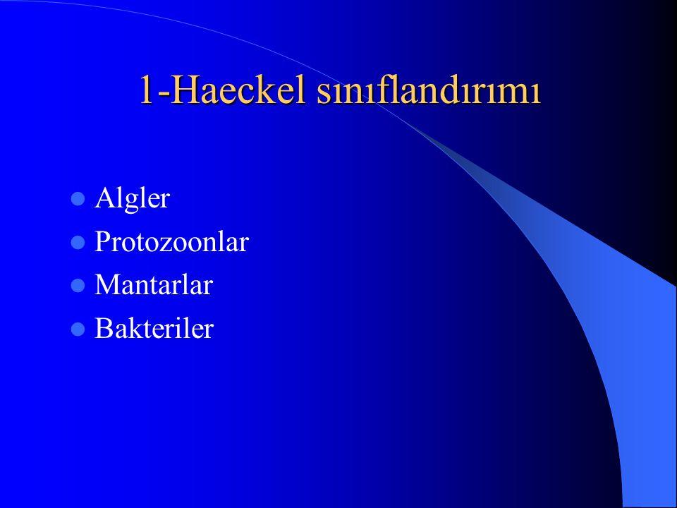 1-Haeckel sınıflandırımı