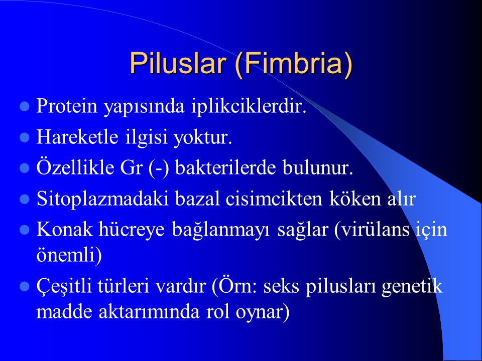 Piluslar (Fimbria) Protein yapısında iplikciklerdir.