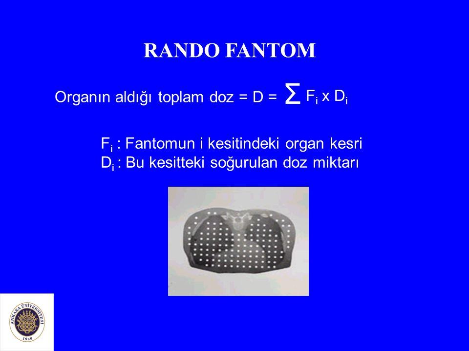 Σ RANDO FANTOM Organın aldığı toplam doz = D = Fi x Di