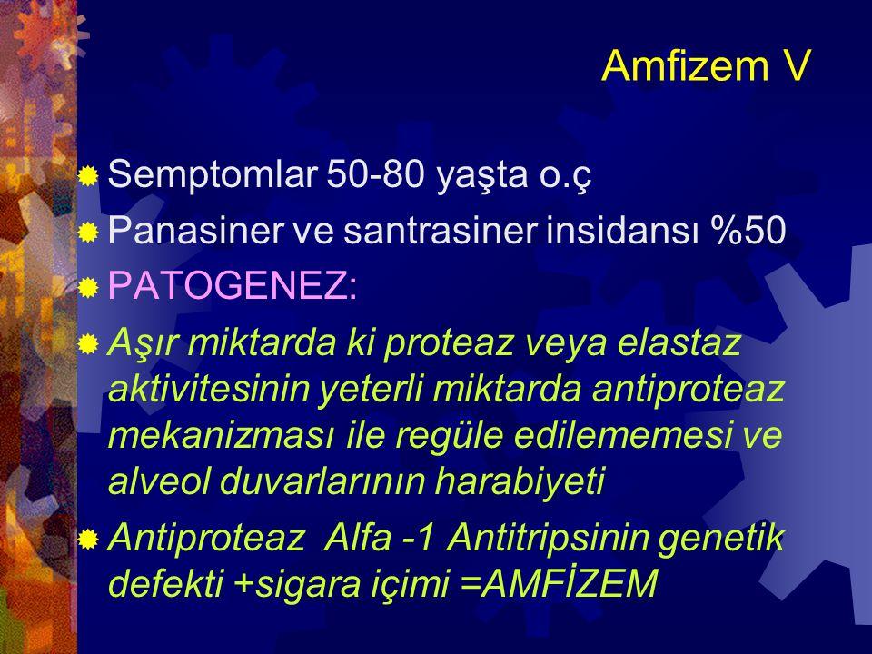 Amfizem V Semptomlar 50-80 yaşta o.ç