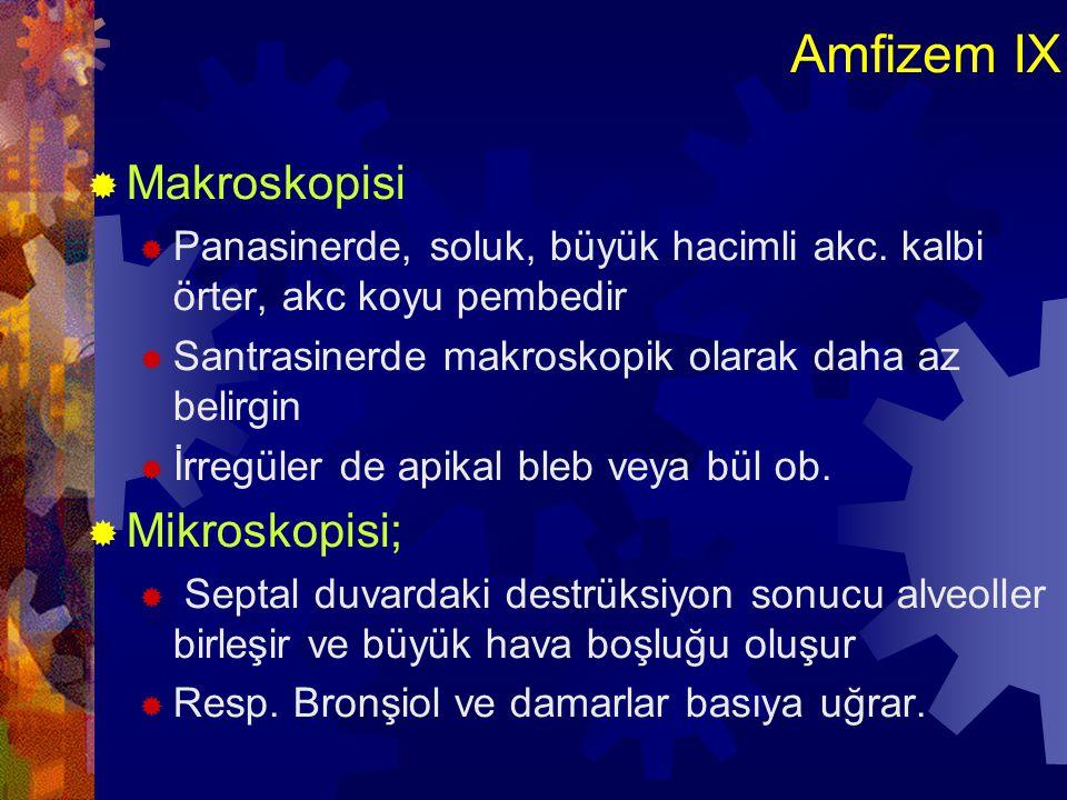 Amfizem IX Makroskopisi Mikroskopisi;