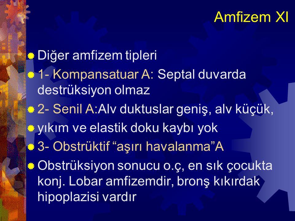 Amfizem XI Diğer amfizem tipleri