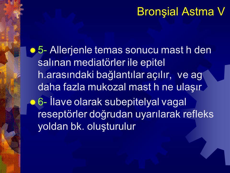 Bronşial Astma V