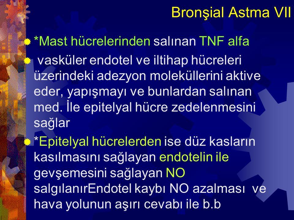 Bronşial Astma VII *Mast hücrelerinden salınan TNF alfa