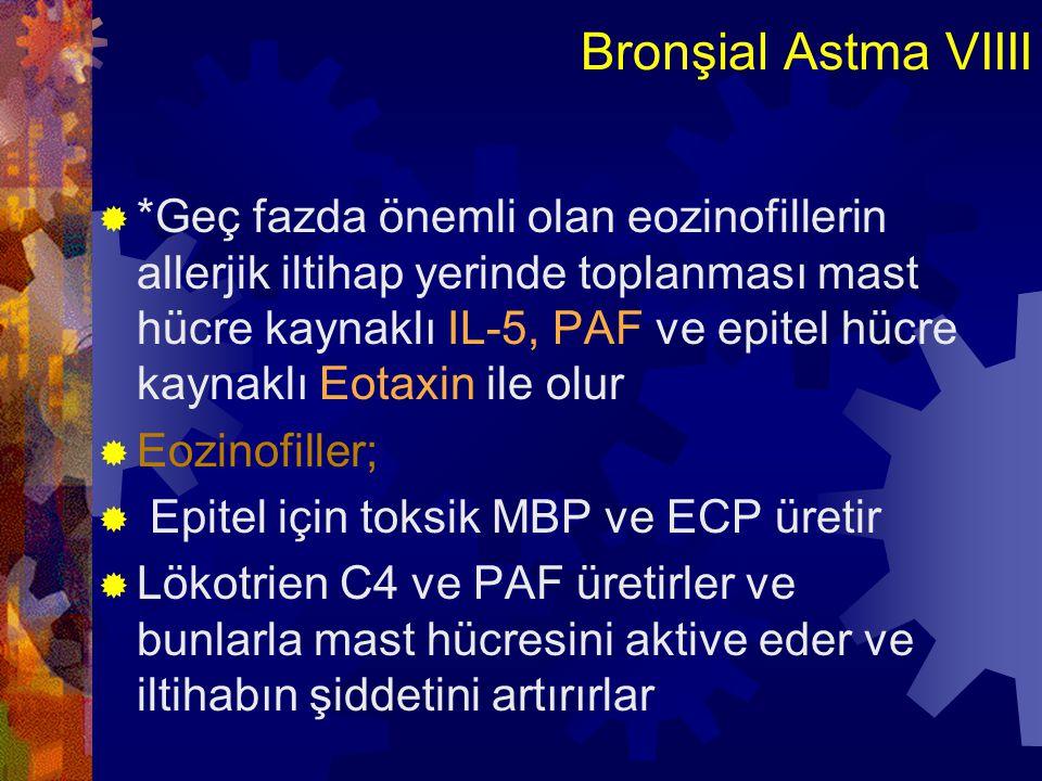 Bronşial Astma VIIII