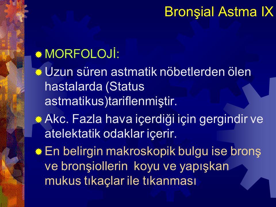 Bronşial Astma IX MORFOLOJİ: