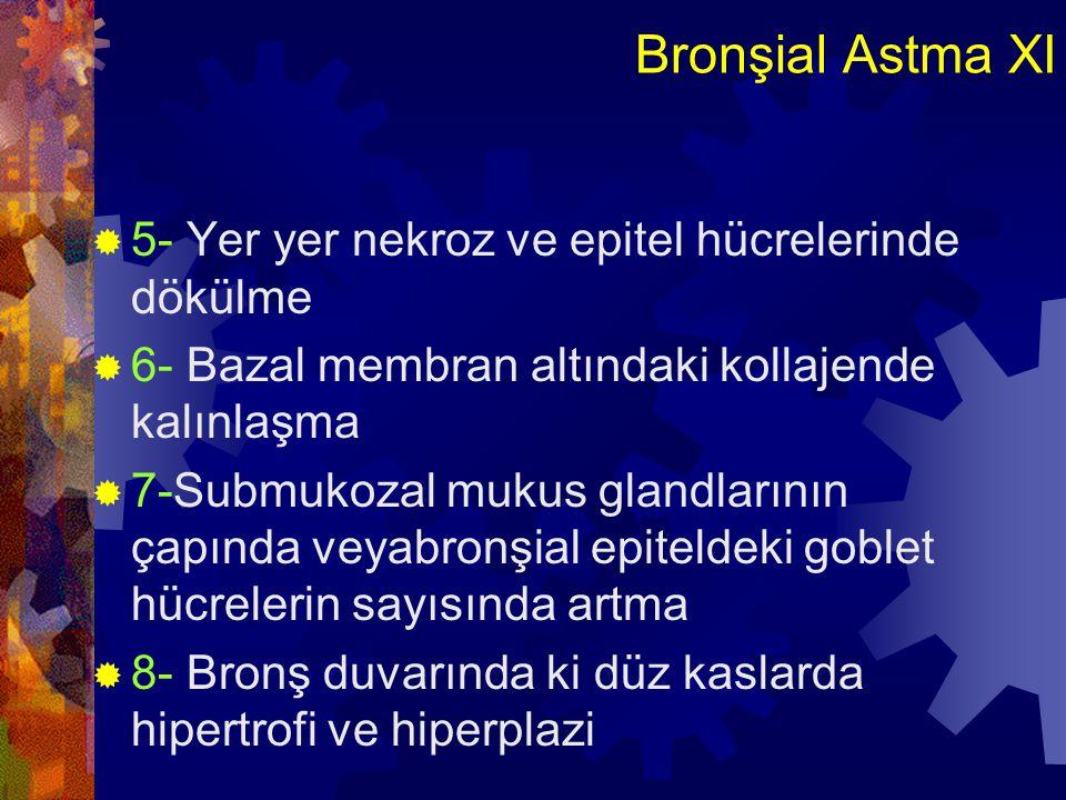 Bronşial Astma XI 5- Yer yer nekroz ve epitel hücrelerinde dökülme