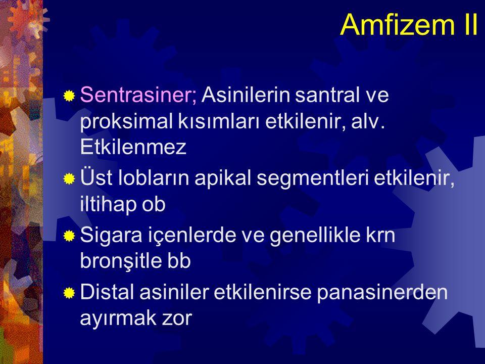 Amfizem II Sentrasiner; Asinilerin santral ve proksimal kısımları etkilenir, alv. Etkilenmez. Üst lobların apikal segmentleri etkilenir, iltihap ob.